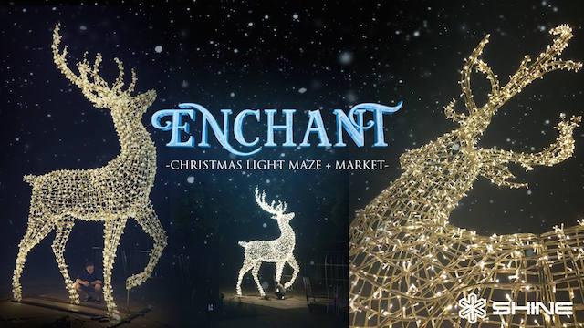 enchanted-light-maze
